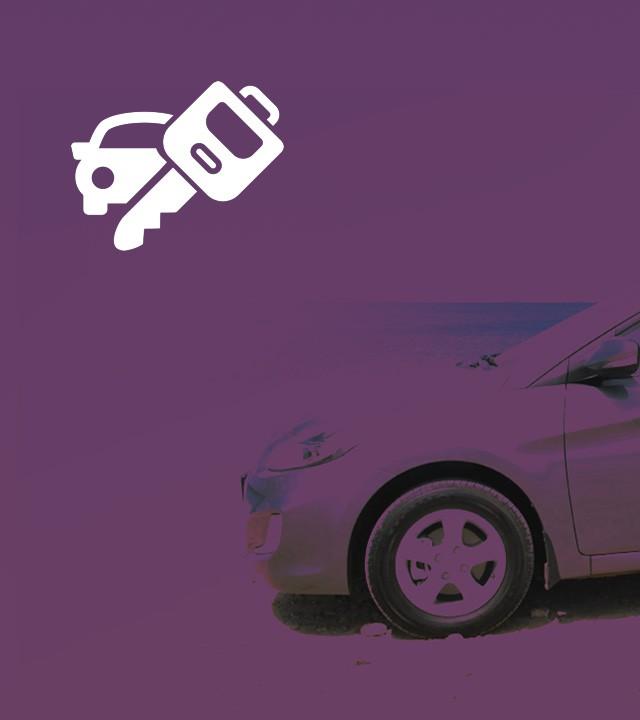 Explore Bonaire with a Rental car.